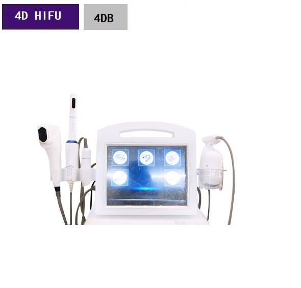 4 in 1 4D Hifu Vmax Face lifting Liposonix Body Slimming Vaginal Tightening Beauty Machine 4DB
